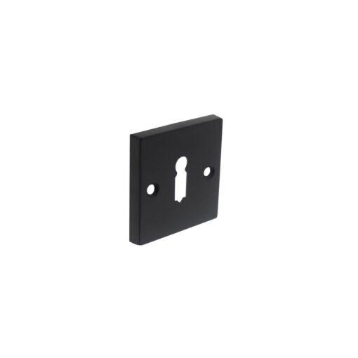 Intersteel Rozet sleutelgat vierkant groot mat zwart